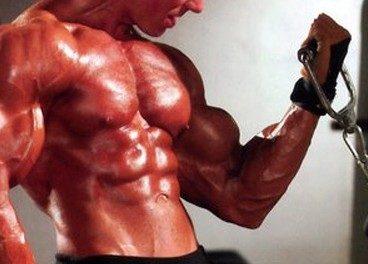 Ganhando peso sem engordar!!!
