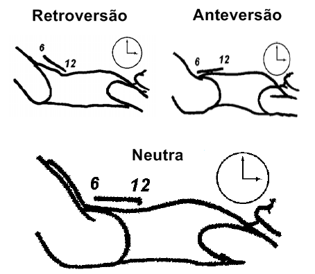 Pilates contrologia 2