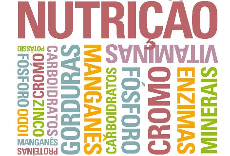 5 Dicas de Livros sobre Nutrição