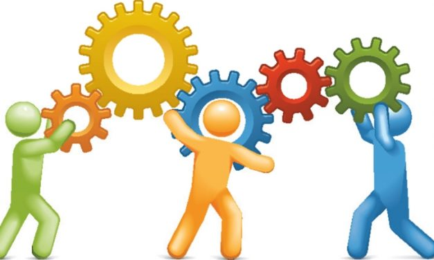 Quais serviços da academia devem ser terceirizados?