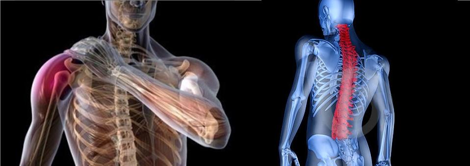 Falta de orientação adequada aumenta lesões nas academias