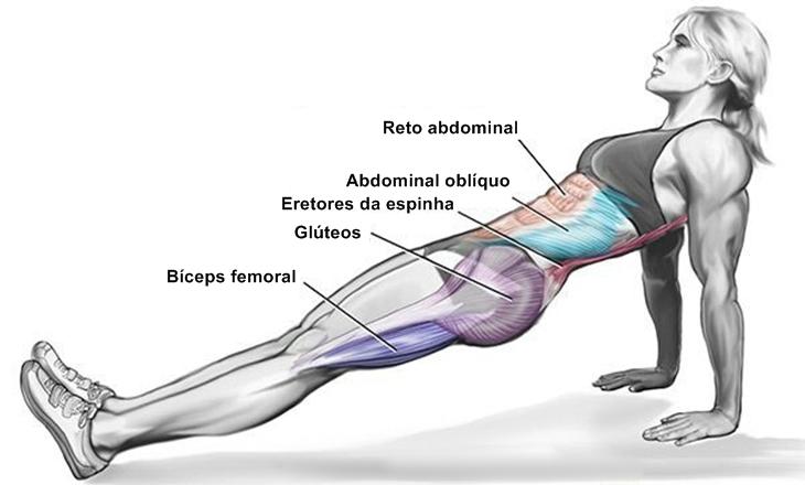 exercicios-de-prancha-musculos-decubito-dorsal