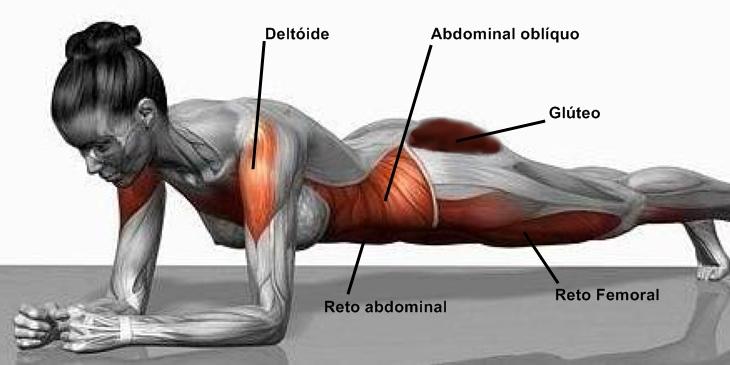 exercicios-de-prancha-musculos-decubito-ventral