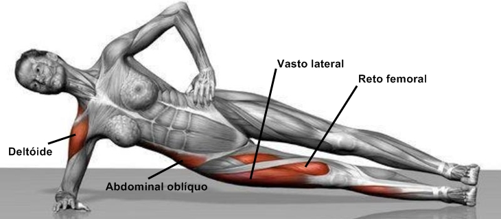 exercicios-de-prancha-musculos-lateral