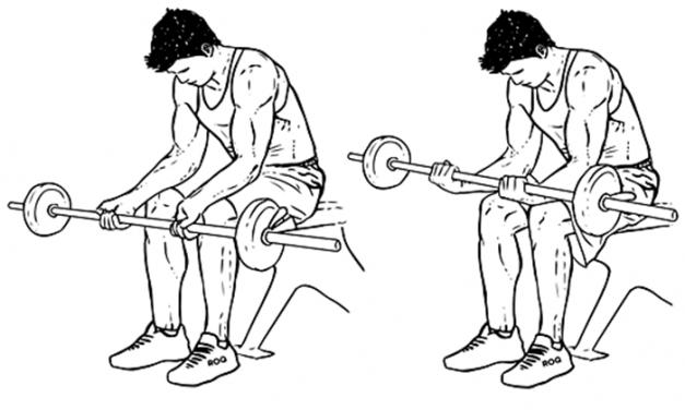 Exercícios para antebraço