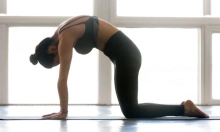 Qual a diferença entre mobilidade e flexibilidade
