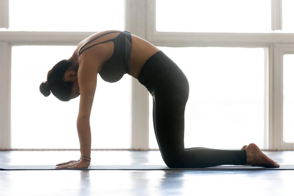 mobilidade e flexibilidade